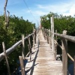 The Witch Island in Anda, Bohol