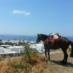 Greece: Dream Travel Destination Series