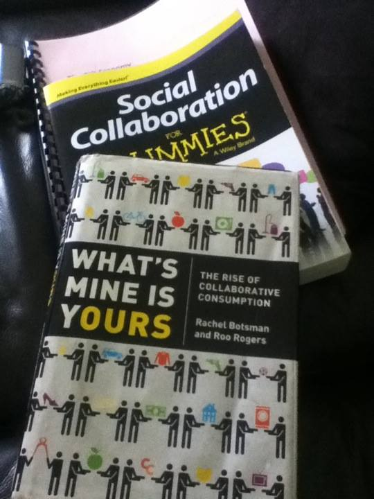 Book Review: What is Mine is Yours