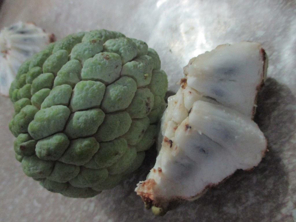 atis fruit