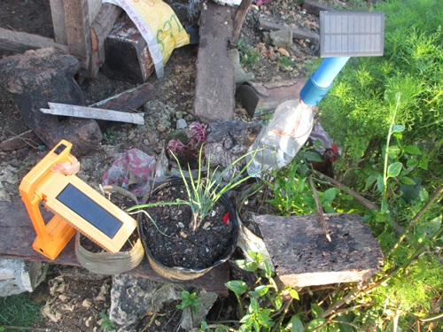 solar lights - sustainable living in Leyte, Philippines