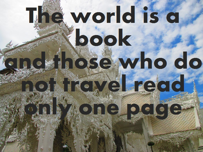 2. the world is a book travel quote