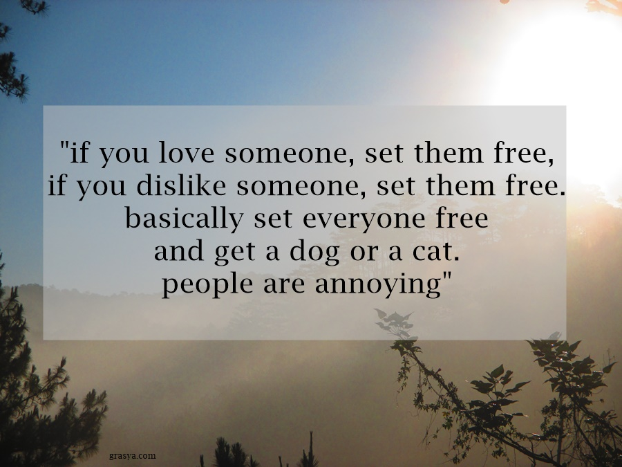 if you love someone, set them free