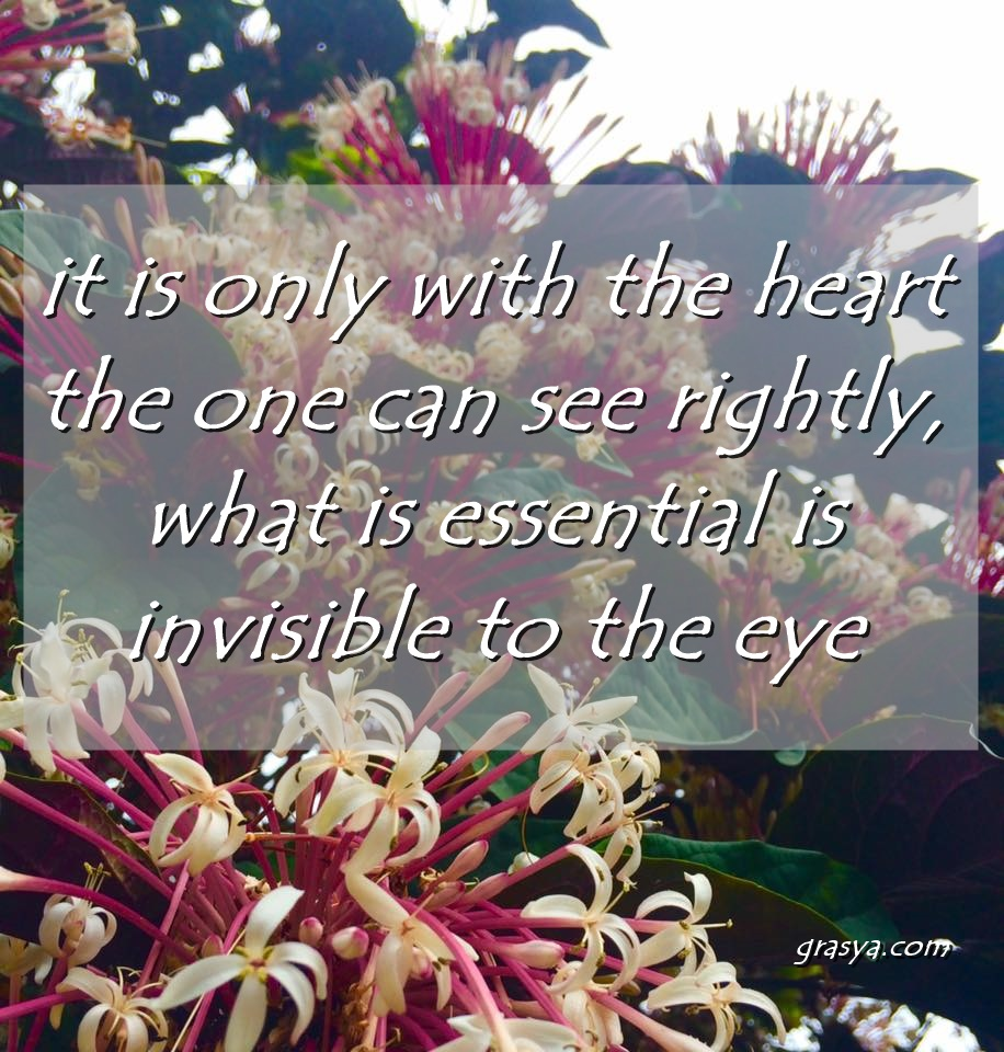 it is only with the heart that one can see rightly, what is essential is invisible to the eye - little prince