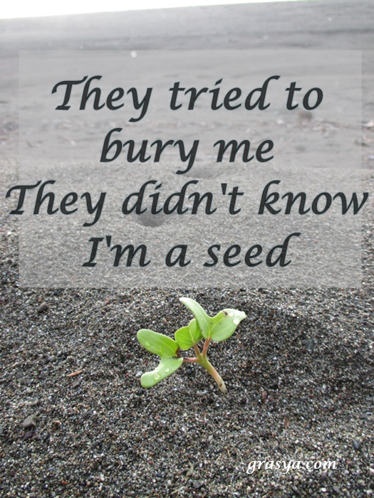they tried to bury me they didnt know im a seed